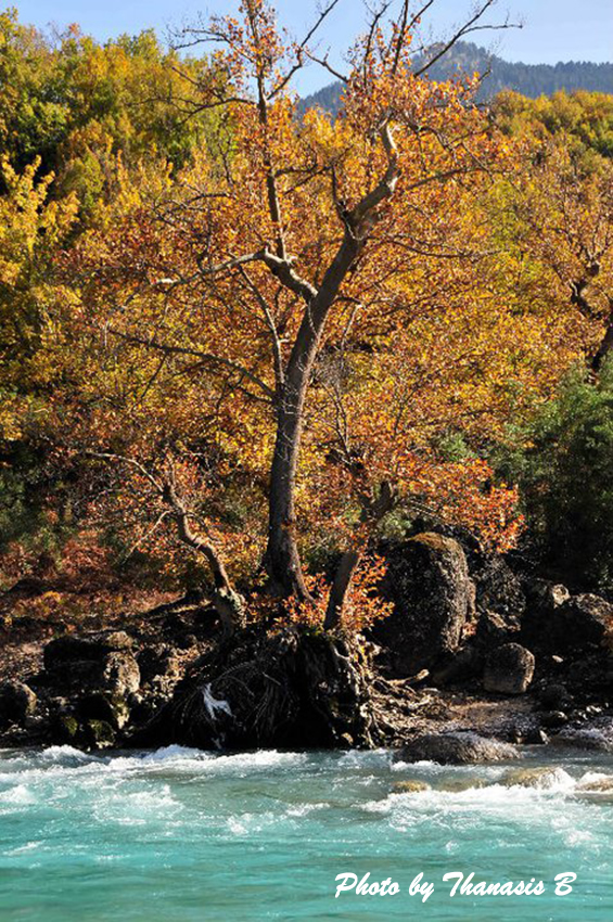 4 Aheloos River Photo By Thanasis Bounas