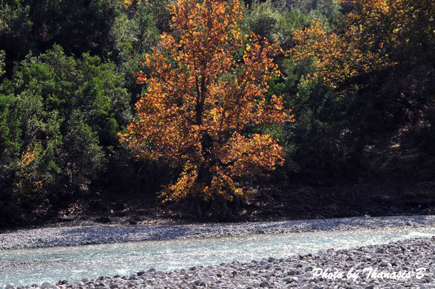 5 Aheloos River Photo By Thanasis Bounas