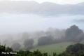 fog-10
