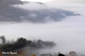 fog-35