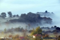 fog-44
