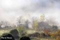 fog-7
